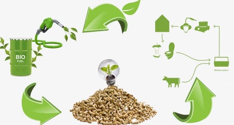 Năng lượng tái tạo là gì ? Tại sao nên sử dụng năng lượng tái tạo 7