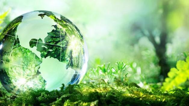 Tìm hiểu tầm quan trọng của năng lượng tái tạo trong tương lai 8