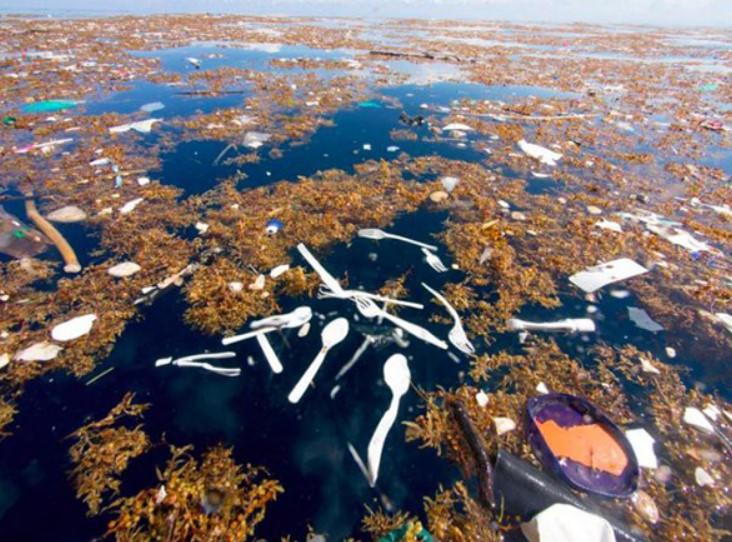 Nhiên liệu hóa thạch là gì ? Tác hại của nhiên liệu hóa thạch với môi trường 5