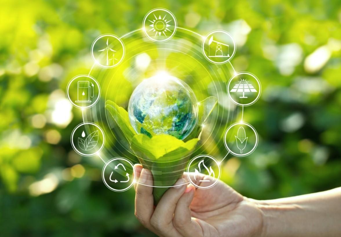 Nhiên liệu hóa thạch là gì ? Tác hại của nhiên liệu hóa thạch với môi trường 9