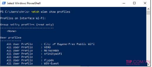Cách xem mật khẩu Wifi đã kết nối trên Windows 10, 8, 7 nhanh nhất 4